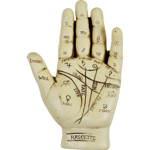 Painted Ivory Finish Resin Palmistry Hand Kit
